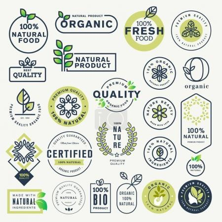 Illustration for Vector illustration concepts for web design, packaging design, promotional material. - Royalty Free Image