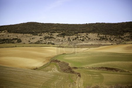 Terrain terrain terrain