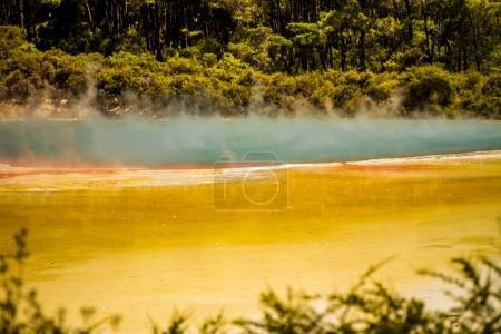 Wai-o-tapu geothermal area