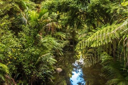 Photo pour Beau paysage abstrait d'un côté de la campagne - image libre de droit