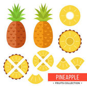 Pineapple Whole pineapple ananas and parts leaves slices core Set of fruits Flat design graphic elements Vector illustration