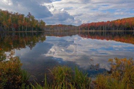 Photo pour Paysage automnal du lac Scout avec reflets dans des eaux calmes, Forêt nationale de Hiawatha, péninsule supérieure du Michigan, Usa - image libre de droit