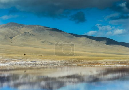 Foto de Nature Landscape of Kazakhstan, Trans-Ili Alatau, plateau Assy. - Imagen libre de derechos