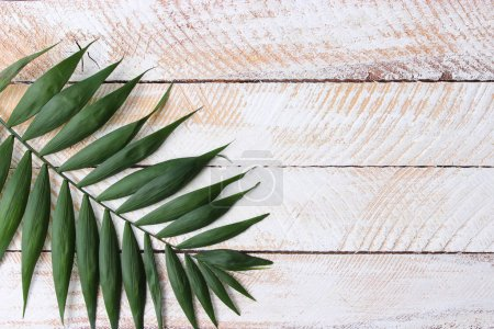 Photo for Palm leaves on a wooden background with free space for text. a draft for a design. minimalism, creativity. flatlay - Royalty Free Image