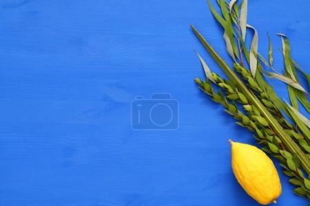 Photo pour Festival juif de Souccot. Symboles traditionnels (Les quatre espèces) : Etrog, lulav, hadas, arava . - image libre de droit