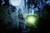 image of magical little fairy sitting in the night forest.