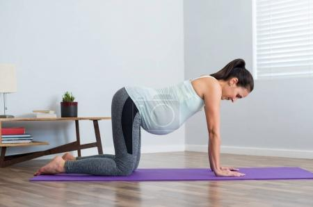 Fitness pregnant woman exercising