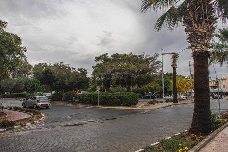 Photo pour PAPHOS, CHYPRE - 31 MARS 2020 : buissons verts et arbres dans la rue avec des voitures - image libre de droit