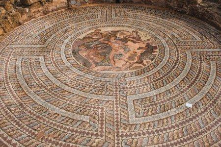 greek mythology mosaics in house of theseus