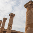 Columns of ancient House of Theseus in paphos...