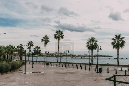 Photo for Tropical palm trees near mediterranean sea against sky with clouds - Royalty Free Image