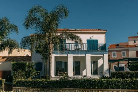 Photo pour Palmiers verts près des maisons modernes contre le ciel bleu - image libre de droit
