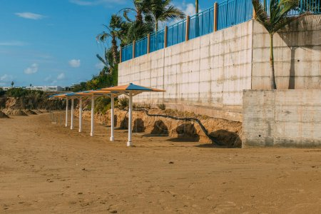Photo for Outdoor umbrellas on sandy beach near palm trees - Royalty Free Image