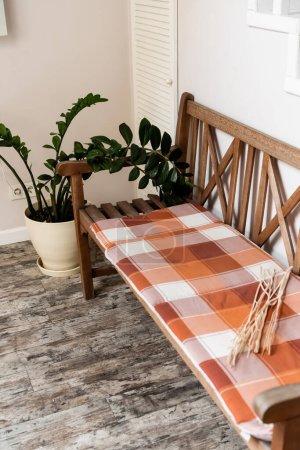 karierte Decke auf Holzbank in der Nähe der grünen Pflanze
