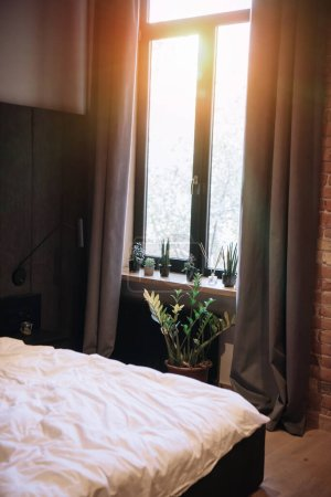 Photo for Bedroom with potted plants on windowsill, dark curtains and white bedding - Royalty Free Image