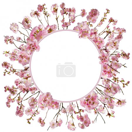 Photo for Adorable cherry blossom background with little branches and leaves, free space for your text - Royalty Free Image