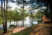 wooden watch terrace and sculpture among pines on large tranquil lake bank against wide blue sky with white clouds