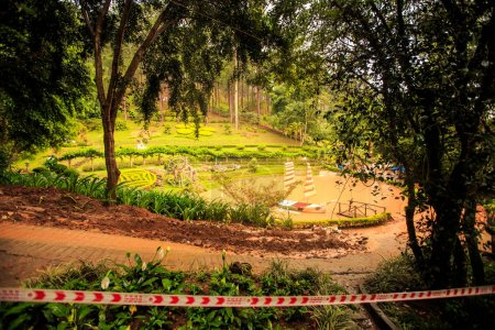 tropical park with pond terraces