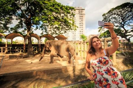 happy woman in bright frock takes photo against elephant in resort city zoo