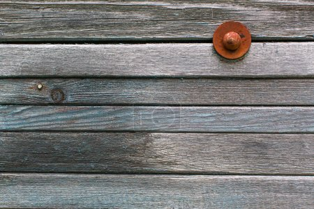 wooden plank wall.