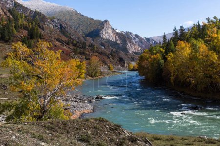 River in Altai Mountains