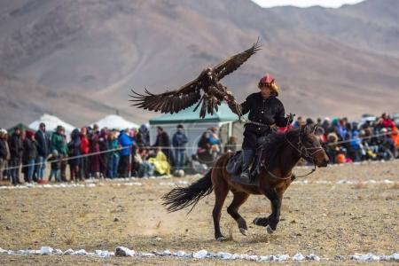 "Photo for OLGIY, MONGOLIA - SEP 30, 2017: Kazakh Golden Eagle Hunter at traditional clothing, with a golden eagle on his arm during annual national competition with birds of prey ""Berkutchi"" of West Mongolia. - Royalty Free Image"