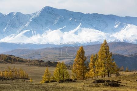 View of the snowy mountain North-Chuya ridge, Altai Republic, Russia