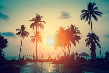 Silhouettes of palm trees on a tropical sea beach during sunset.
