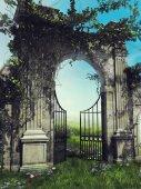 Garden gate with spring vines
