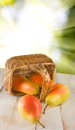 pears and basket closeup