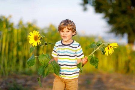 Photo pour Adorable petit garçon blond sur le champ de tournesol d'été à l'extérieur. Mignon enfant d'âge préscolaire s'amusant lors d'une chaude soirée d'été au coucher du soleil. Enfants et nature. - image libre de droit