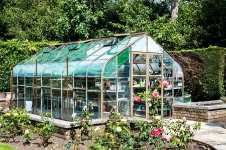 Garden Green House Surrounded By Rose Bushes and Hedges