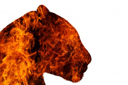 jaguar with fire on a