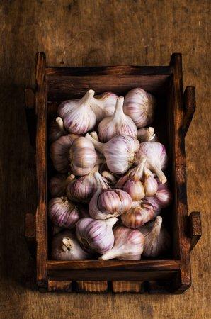 Raw garlic cloves