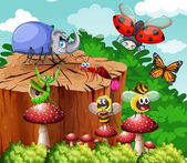 Different types of insects in garden