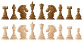 Two colors of chess pieces