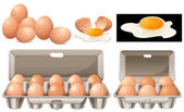 Raw eggs in different packages