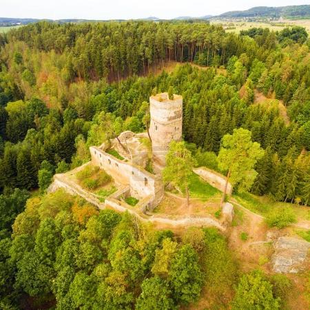 Ruins of gothic castle Frydstejn in National Park Cesky Raj