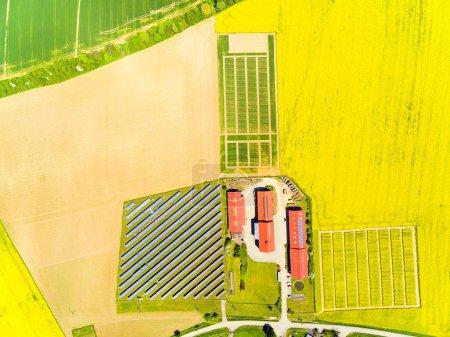Photo pour Vue aérienne de champs verdoyants de blé et de colza et une ferme moderne avec organique produisent. Paysage agricole d'en haut. - image libre de droit