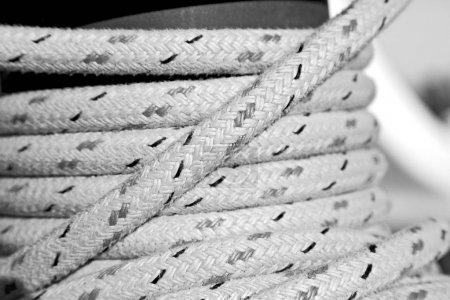 Photo for In  australia the concept of navigation whit vassel rope like background - Royalty Free Image