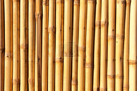 Photo for Abstract texture background of the bamboo wall and material decor - Royalty Free Image