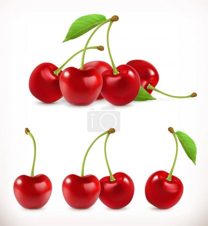 Illustration for Cherry. Sweet fruit. 3d vector icons set. Realistic illustration - Royalty Free Image