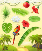 Jungle Palm banana mango parrot water lily hibiscus Set of leaves and flowers Tropical plants 3d vector icon set