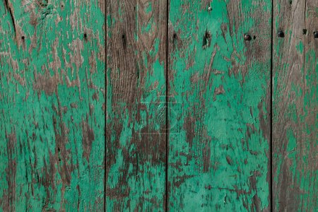 Photo for Old shabby wooden planks painted in green - Royalty Free Image