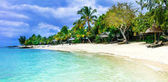 Serene tropical vacation. Beautiful beaches of Mauritius island.