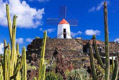 Photo pour Populaire jardin de Cactus, l'île de Lanzarote, Canaries, Espagne. - image libre de droit