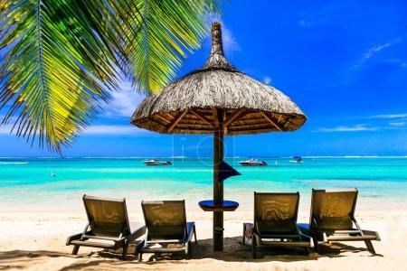 Foto de Paraíso tropical en Isla Mauricio, mar azul y palmera . - Imagen libre de derechos