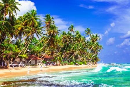 Tropical palm paradise in Sri Lanka, beach of Hikkaduwa
