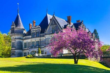 Photo pour Châteaux romantiques de la vallée de la Loire, château de Bourdaisière, France - image libre de droit
