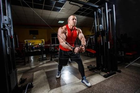 Photo for Sport, workout, people, gym concept. Portrait of muscle man doing exercises in the gym. Strong bodybuilder man with perfect body. Sports wallpapes - Royalty Free Image